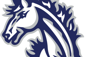 Myer's Mustang Head